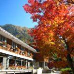 autumn_09