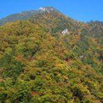 autumn_14